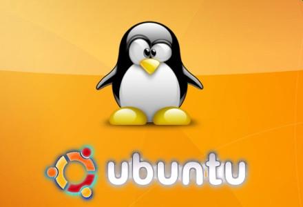 Cách mở file rar trên Linux bằng phần mềm Unrar-Free | vnHow vn