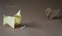 Cách xếp chú chó Chihuahua Origami